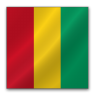 Guinea large png icon