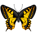 butterfly Png Icon