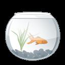 aqua Png Icon