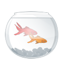 aqua 5 png icon