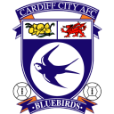cardiff png icon