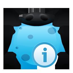 info bug
