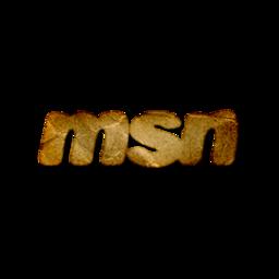 msn logo webtreatsetc