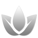 14 W Png Icon