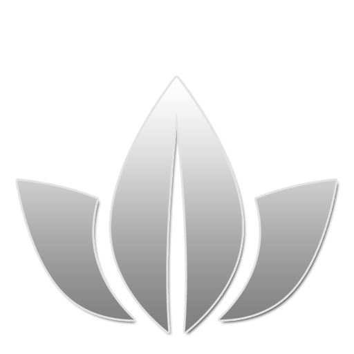 25 W large png icon