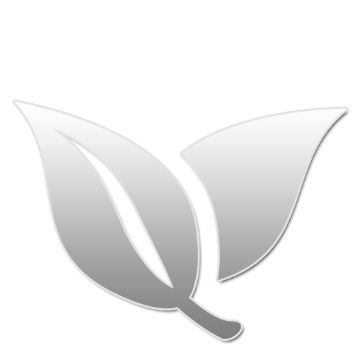 29 W large png icon
