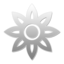10 W large png icon