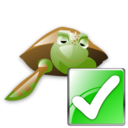 correct png icon