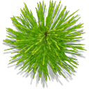 spikedplant png icon