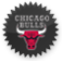 chicagobulls Png Icon
