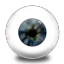 oeil large png icon