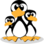 pingus large png icon