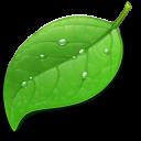coda Png Icon