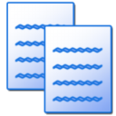 copy Png Icon