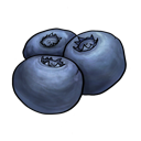 fruit Png Icon