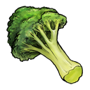 broccoli png icon