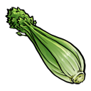 celery Png Icon