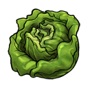 lettuce Png Icon