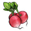 radish Png Icon