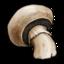 mushroom large png icon