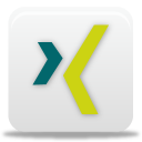 xing Png Icon