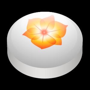 illustrator large png icon