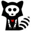raccoon large png icon