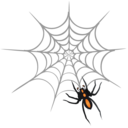 spider Png Icon