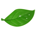 tea Png Icon