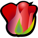 rose png icon