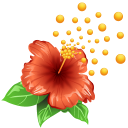pollen Png Icon