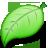 leaf Png Icon