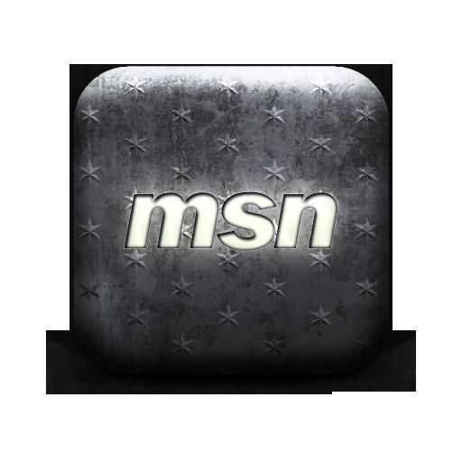 msn logo webtreatsetc large png icon