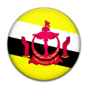 brunei large png icon