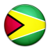 guyana large png icon