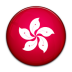 hong large png icon