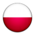 poland large png icon
