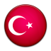 turkey large png icon