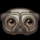 pug Png Icon