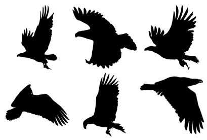 bird-silhouettes icons thumbnails